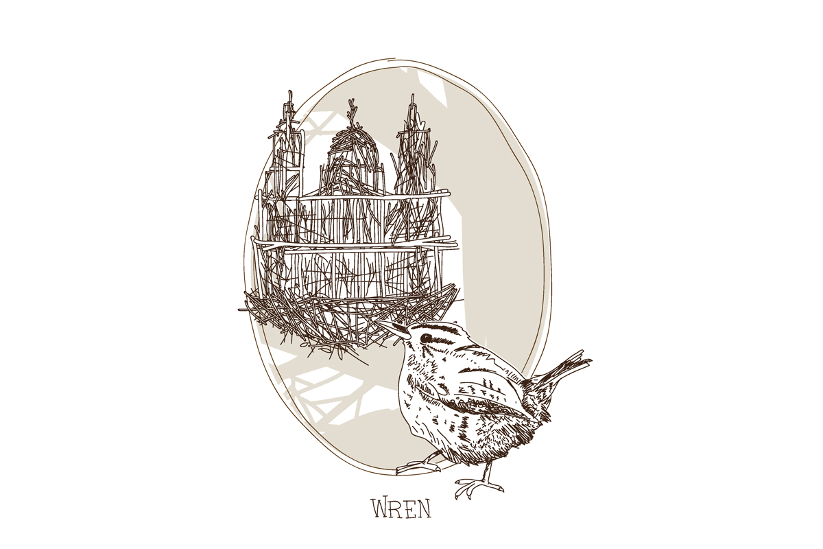 sir-christopher-wren